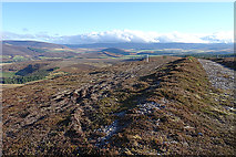 NJ1824 : Looking South-east from Cairn Daimh by Anne Burgess