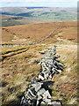 NY9033 : Haphazard line of stones descending hill slope by Trevor Littlewood