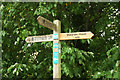 SX8158 : Signpost, Dart Valley Trail by Derek Harper