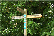 SX8158 : Signpost, Dart Valley Trail by Derek Harper