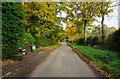 TG2130 : Colby Road, towards Colby by Ian S