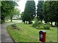 TQ5490 : In Harold Wood Park by Robin Webster