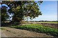TG1734 : Dave's Walk towards Aldborough by Ian S