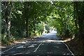 TQ0993 : Sandy Lodge Lane by N Chadwick