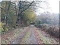 NY0903 : Farm track east of Rainors by Graham Robson