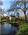 TL4551 : Great Shelford millpond in autumn by John Sutton