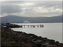 J3979 : Belfast Lough, Holywood by Stephen McKay