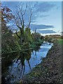 SK6672 : By The River Meden by Neil Theasby