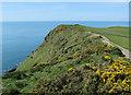 SX6738 : South West Coast Path towards Gray Stone by Hugh Venables