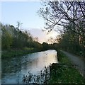 SK4744 : Sunset on the Nottingham Canal by Alan Murray-Rust
