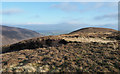 NY3430 : Peat bank on ridge of The Tongue by Trevor Littlewood