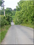 J3532 : Tullybrannigan Road descending northwards towards Priest's Bridge by Eric Jones
