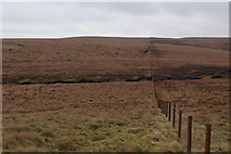 SD6860 : Lonely Moorland East of the Cross of Greet by Chris Heaton