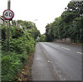 ST1988 : Speed limit reminder, Newport Road, Lower Graig-y-rhacca by Jaggery