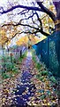 SJ8485 : Alleyway leading from the railway station to Heald Point. Heald Green, Manchester by Benjamin Shaw
