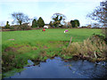 NS4267 : North Mains Farm by Thomas Nugent