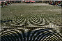 TQ3783 : View of Shrouds of the Somme from the bridge over the South Lawn by Robert Lamb
