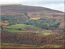 NJ1731 : The Other Side of Strath Avon by Anne Burgess
