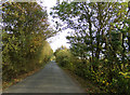 TL8823 : Salmon's Lane, East Gores, Broad Green by Geographer