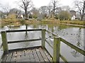 SP4165 : Long Itchington, village pond by Mike Faherty