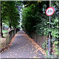 ST7564 : No cycling on a footpath west of St Mark's Road, Widcombe, Bath by Jaggery