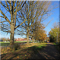 TF6320 : King's Lynn: on Sandringham Railway Path by John Sutton
