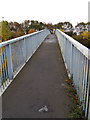 TL9123 : Footbridge over the A12 London Road by Adrian Cable