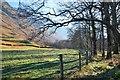 NN1272 : Farmland, Glen Nevis by Jim Barton