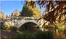 TQ2077 : Classic Bridge, Chiswick House gardens by Paul Harrop