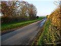 NZ4808 : Holme Lane, heading north-east to Seamer by Christine Johnstone