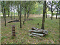 SP2260 : Log pile, Red Hill estate by Stephen Craven