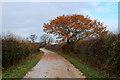SE4845 : On Manor Lane by Chris Heaton