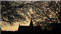 SX9066 : Chapel in Torquay Cemetery by Derek Harper