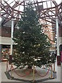 SH7882 : Christmas tree in the Victoria Shopping Centre by Richard Hoare
