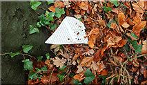 SX9065 : Fragment of information board, Chapel Hill Pleasure Grounds by Derek Harper