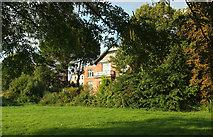 SX9063 : Houses on Avenue Road, Torquay by Derek Harper
