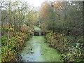 SE4527 : Drain, RSPB Fairburn Ings by Christine Johnstone