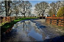 H5472 : Water lying along Roeglen Road by Kenneth  Allen
