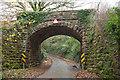 ST1136 : Railway bridge, Water Farm by Derek Harper