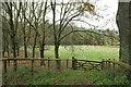 ST1137 : Pasture near West Quarkhill by Derek Harper