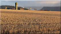 NH6454 : Stubble field above Tullich Steading by Julian Paren