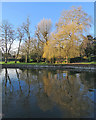 TL4459 : Reflections in the River Cam by John Sutton