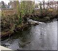 ST1493 : Minor confluence in Ystrad Mynach by Jaggery