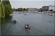 SU7682 : River Thames by N Chadwick