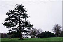 TQ1450 : Denbies House by Peter Trimming