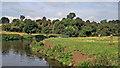 SK5023 : River Soar west of Zouch in Nottinghamshire by Roger  Kidd