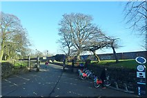 J3472 : Belfast Bikes' docking station at a gate to Ormeau Park by Eric Jones
