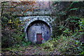 SO6308 : Moseley Green Tunnel - northern portal by John Winder
