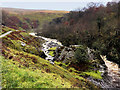 SD6975 : River Twiss between Pecca Falls and Thornton Force by David Dixon