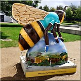 SJ8798 : I'd Rather Bee Cycling (2) by Gerald England